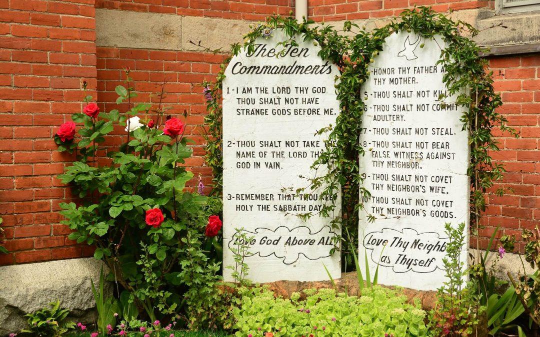 A Reflection on the 10 Commandments | Jeff Cavins