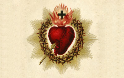 The Third Promise of the Sacred Heart – Comfort in Our Troubles